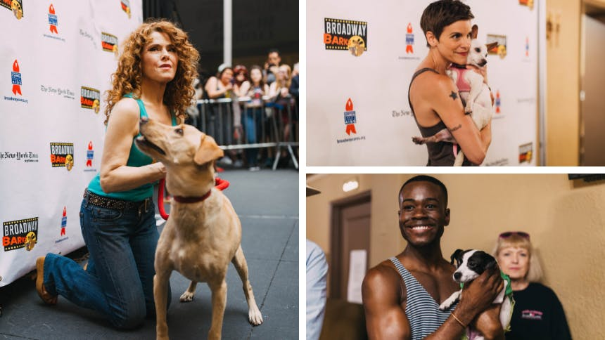 5 Pawsitively Sweet Snaps From Broadway Barks Featuring Bro…