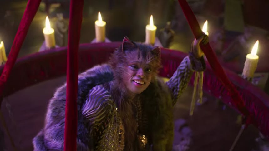 see the stars of the cats as cats in these animated gifs
