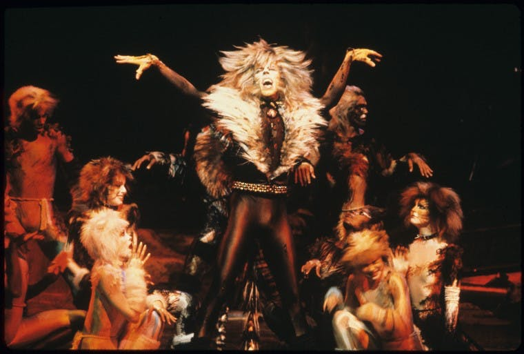 Who's The Cat's Meow? Let Us Know! It's Cats Opening Night …